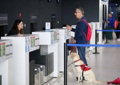 Psi pomagači u Međunarodnoj zračnoj luci zagreb
