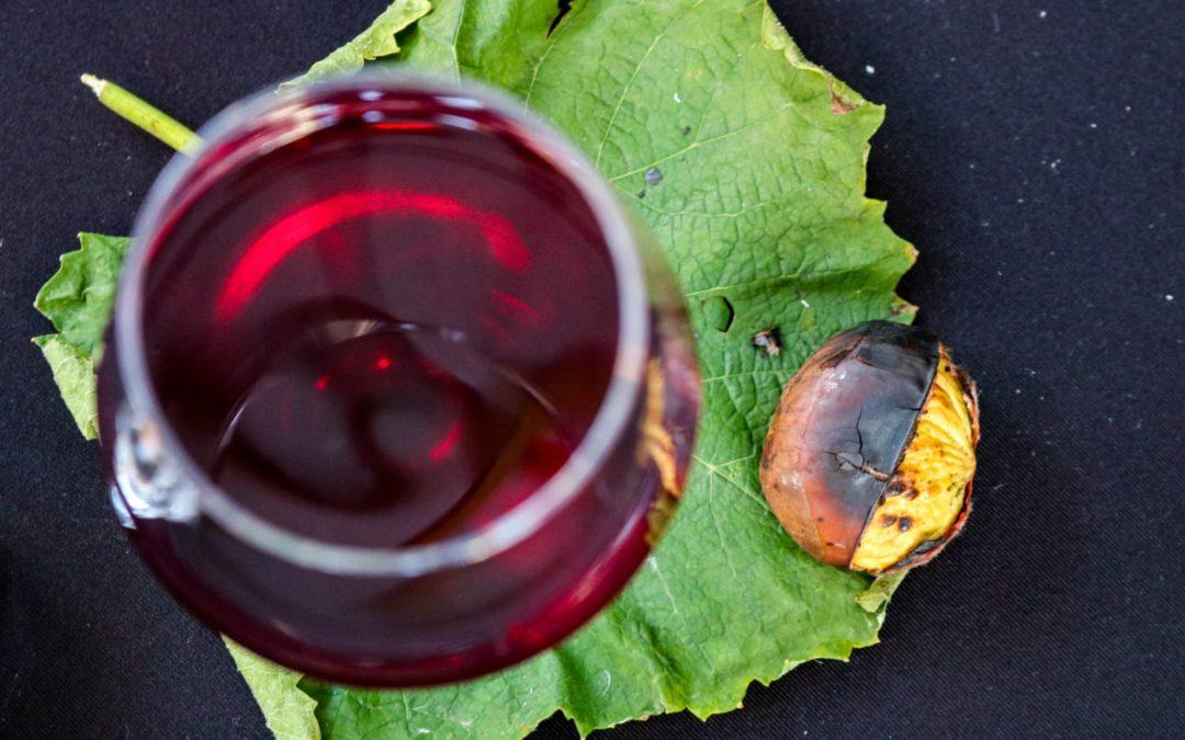 Svečano otvorena prva butelja Portugisca Plešivica