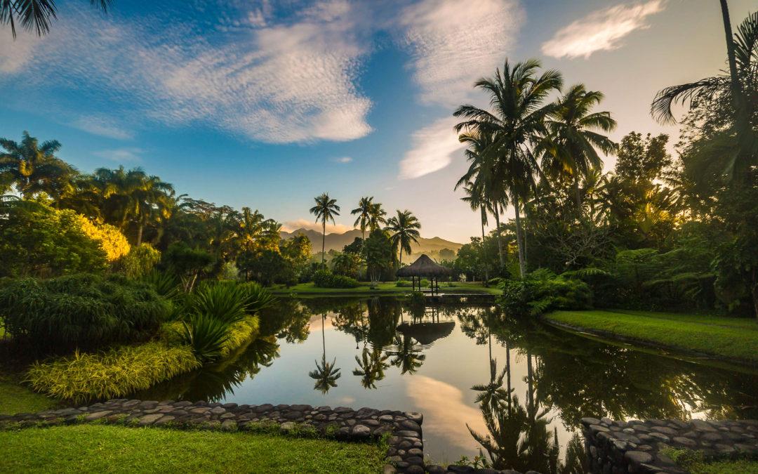 Farma San Benito, holistička prašumska oaza