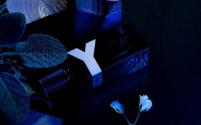 Novi YSL beauty muški miris, Y Le Parfum